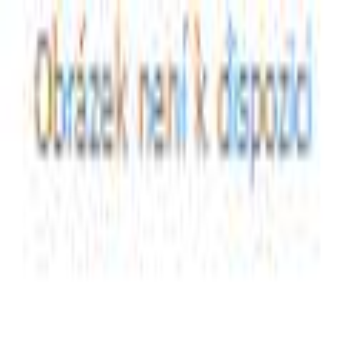 LEKI Race Coach Gloves C-Tech S red 6.5